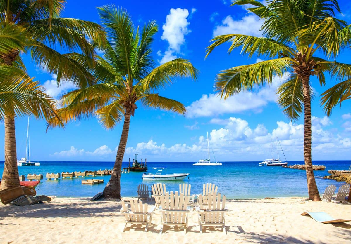 beach-chairs-dominican-beach-palm-trees